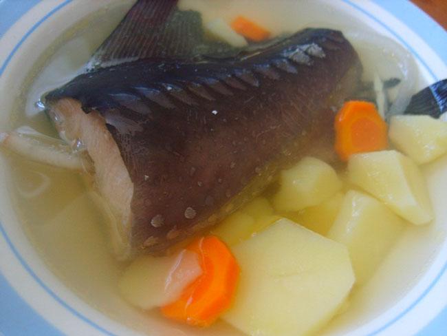 Рыбный суп из головы осетра